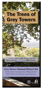 Trees of Grey Towers brochure